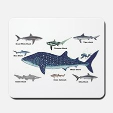 Shark Types Mousepad