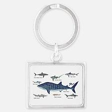 Shark Types Keychains