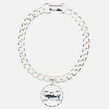 Shark Types Bracelet