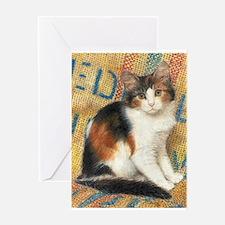 Calico Kitten Cat Greeting Card
