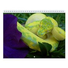 Reptile and Amphibian Wall Calendar