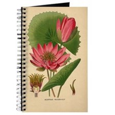 Egyptian Water Lily Journal