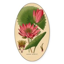 Egyptian Water Lily Decal