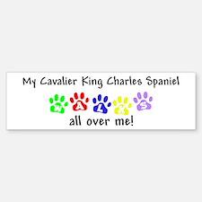 Cavalier Walks Bumper Bumper Bumper Sticker