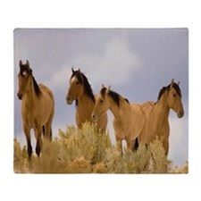 Buckskin Horses Throw Blanket