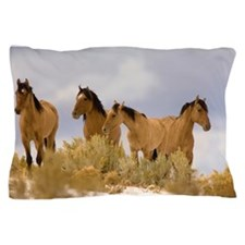 Buckskin Horses Pillow Case