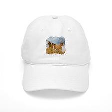 Buckskin Horses Baseball Cap