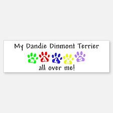 Dandie Dinmont Walks Bumper Bumper Bumper Sticker