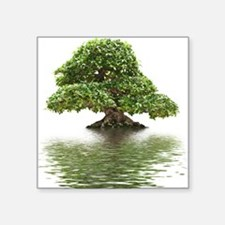 "ficus water reflection Square Sticker 3"" x 3"""