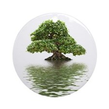 ficus water reflection Ornament (Round)