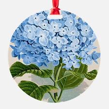 Blue hydrangea flowers Ornament
