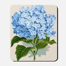Blue hydrangea flowers Mousepad