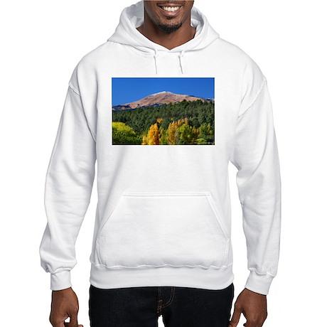 Hooded Sweatshirt Sierra Blanca - Cree /Summit