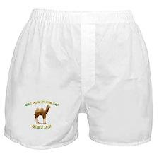 Hump Day Boxer Shorts