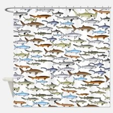 School of Sharks 2 Shower Curtain