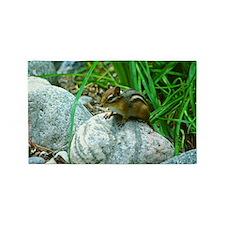 Chipmunk on a rock 3'x5' Area Rug
