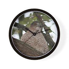hawk4.png Wall Clock