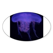 Jelly Fish Blue Decal