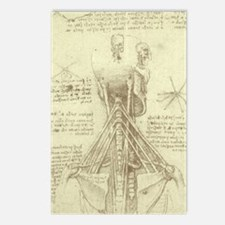 Spinal Column by Leonard Postcards (Package of 8)