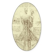 Spinal Column by Leonardo da Vinci Decal