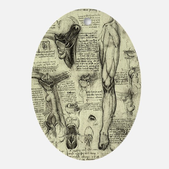 Larynx and Leg by Leonardo da Vinci Oval Ornament