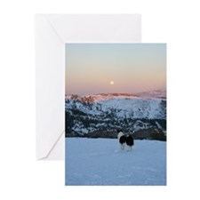 Bella & Mountain ViewGreeting Cards (Pk of 10)