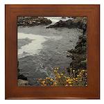 Seal Rock Coastal Scene Framed Tile