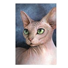 Cat 578 Postcards (Package of 8)