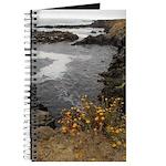 Seal Rock Coastal Scene Journal