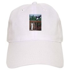 Cat Flight Baseball Cap