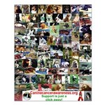 Canine Cancer Kids Small Poster