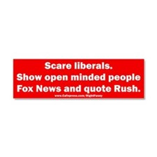 Scare Liberals Car Magnet 10 x 3