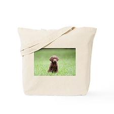 Chesapeake Bay Retriever Puppy Tote Bag