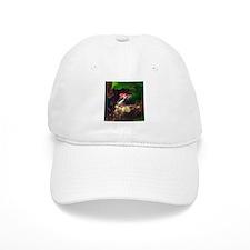 pileated woodpecker Baseball Cap