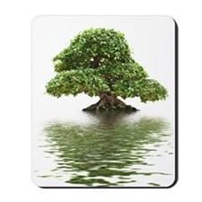 ficus water reflection Mousepad