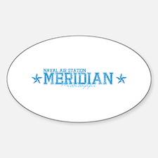 NASmeridian.png Sticker (Oval)