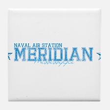 NASmeridian.png Tile Coaster