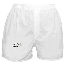 Sleepy Panda Boxer Shorts