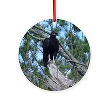 black vulture Ornament (Round)