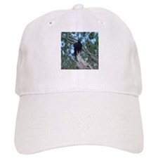 black vulture Baseball Cap
