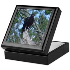 black vulture Keepsake Box