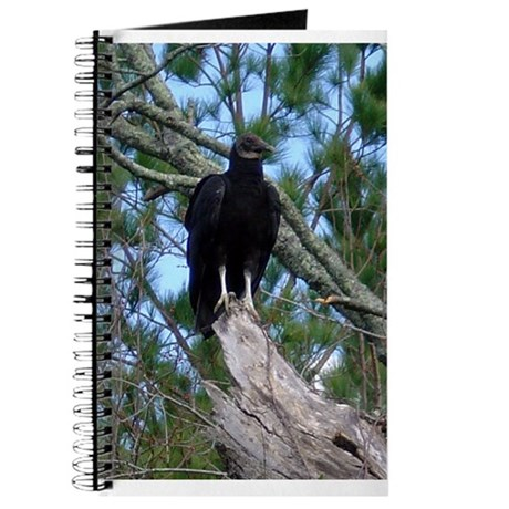 black vulture Journal