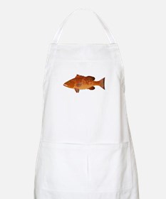 Red Grouper f Apron
