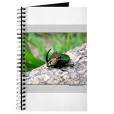 Dung Beetle Journal