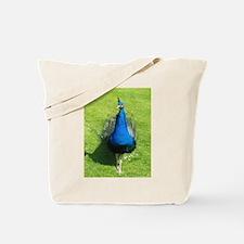 Peacock on grass.jpg Tote Bag