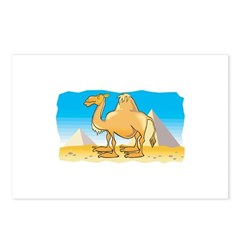 Camel and Pyramids Postcards (Package of 8)