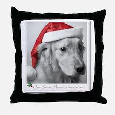 Santa, Let Me Explain Throw Pillow