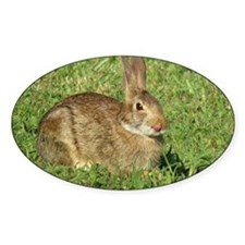 Bunny With Tongue Out Decal