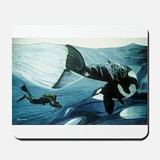 Orca & Diver Mousepad