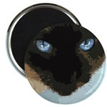"Siamese Cat 2.25"" Magnet (10 pack)"